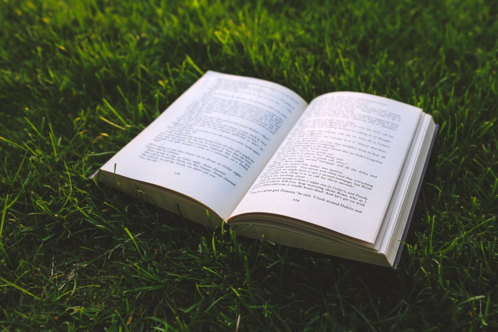 Book on green grass